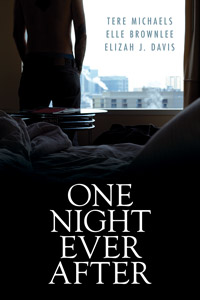 OneNightEverAfter