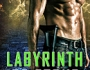 T.A. Moore's Enthralling Labyrinth ofStone